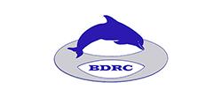 BDRC_250x110